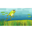 A frog jumping in the grass vector image