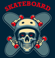 skull of skater vector image vector image