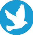 Flying dove for peace concept and wedding design vector image