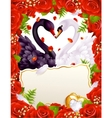 Greeting card with swans in love vector image