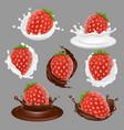 strawberry dessert icon set vector image