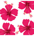 tropical flower pattern background vector image