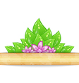Eco friendly background with green leaves flower vector image
