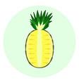half pineapple icon pineapple split in a half vector image