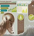 An infographics of an animal vector image