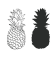 Black and white Pineapple vector image