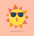 Summer sun wearing sunglasses vector image