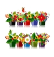 Set of floral pots isolated for your design vector image vector image