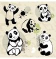 Pandas set vector image
