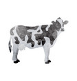 watercolor cow on white vector image
