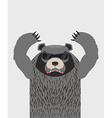 Angry grizzly bear with glasses vector image