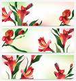 header bright floral backgrounds vector image