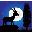 Silhouette mountain sawhorse moon in the night vector image