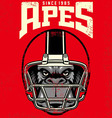 vintage ape football player vector image vector image