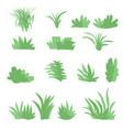 flat grasses set bush set with isolated white vector image