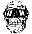 skull in sunglasses vector image