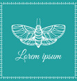 hand drawn butterfly doodle style logo in frame vector image