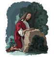 Agony in the garden Jesus in Gethsemane scene vector image vector image