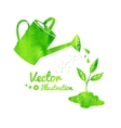 Watering can and growing sprout vector image
