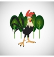 Animal design rooster icon Isolated vector image