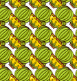 Seamless pattern of cacti and succulents in pots vector image