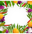 vegetables and spices background vector image