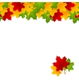 maple template vector image vector image