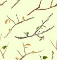 Seamless texture branch various Sprigs twig tree vector image