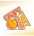 Grapefruit vector image