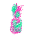 Modern pineapple paint art with summer color vector image