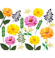 summer floral pattern card background vector image