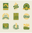 Wheat labels and badges vector image