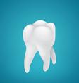 Healthy human teeth vector image