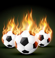 fire football vector image