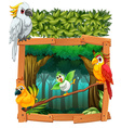 Four birds living in the jungle vector image vector image