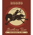 Rodeo Cowboy Poster vector image