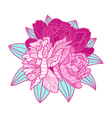 bouquet made of peonies on white background vector image