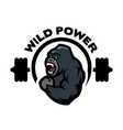 angry gorilla sports gym logo vector image vector image