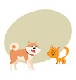 Akita inu dog and red cat kitten characters vector image