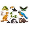 Sticker set of wild animals vector image
