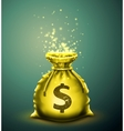 Bag of money vector image vector image