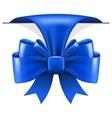 Big blue bow vector image