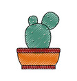 cactus un the potted vector image