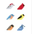 Various Birds vector image