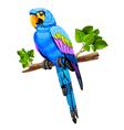 big parrot vector image