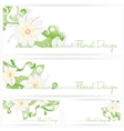 Flower background brochure Floral cards vector image vector image