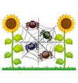 spiders on web in sunflower garden vector image