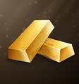 two gold nuggets vector image
