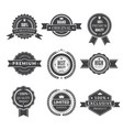 vintage template of monochrome premium labels for vector image