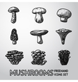 Set of freehand MUSHROOMS icons - porcini vector image